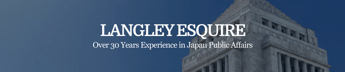 50% off a 30-minute virtual consultation on public affairs and management consultancy from Langley Esquire